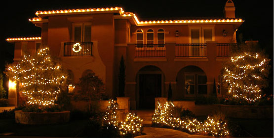House, Shrubs, and Trees Covered with Christmas Light